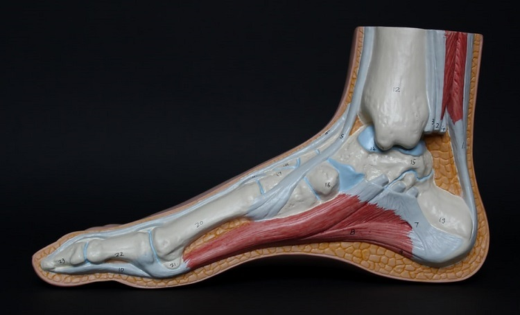 Achilles Tendonitis Footwear